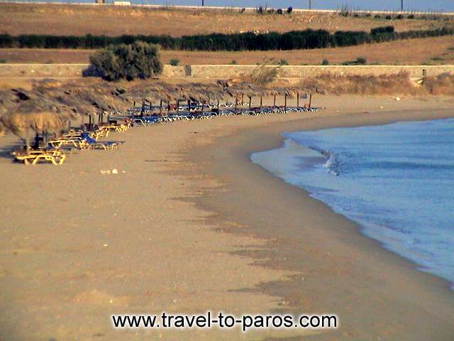 GOLDEN BEACH - Chryssi Akti (Golden beach) is one of the most beautiful beaches of Paros that attracts many toustists.