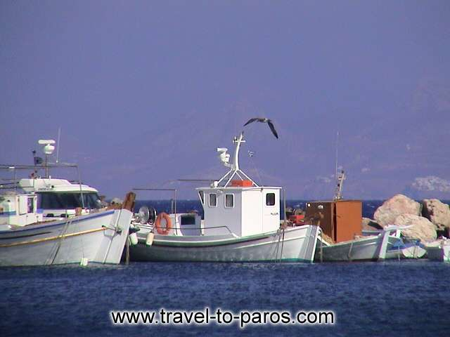AMPELAS BEACH - The fishing boats to the little harbour of Ampelas are waiting for their captains...